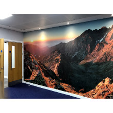 First Actuarial Office Build - Mountain Mural