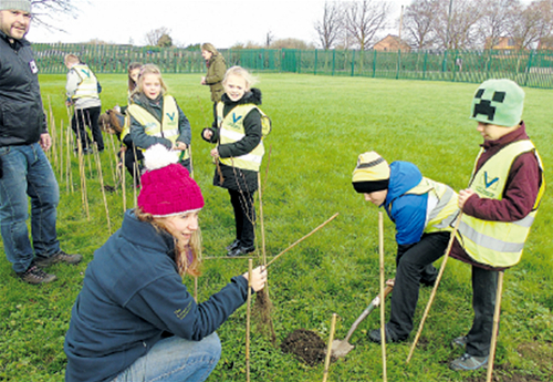 Gardening skills put to the test in tree planting day