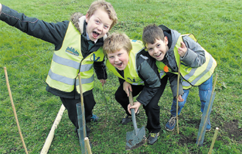 Three boys at Kingsway Primary School were delighted to discover worms as they planted their trees.